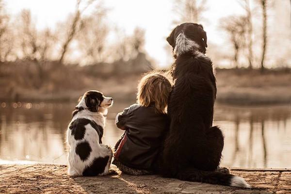 男孩與狗狗們勾肩搭背:牠們都是我兄弟!(圖/Agnieszka Gulczyska,以下同) 記者林育綾/綜合報導 波蘭一位熱愛馬術的媽媽Agnieszka Gulczyska,自從3年前懷孕暫時無法騎馬後,意外踏上攝影師生涯。當她的孩子出生後,她也替兒子Igor 與家裡的3隻狗攝影,其中有許多以捕捉「背影」角度來呈現,小男孩與狗狗們勾肩搭背一起曬太陽、曬恩愛的溫暖畫面,讓網友直說這是「最完美的背殺組合」!  這系列紀錄照很多以背影取景,被稱讚是「最完美背殺組合!」   Agnieszka Gu