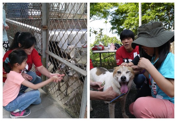「新竹市保护动物协会」也提到,许多狗咬孩童事件,若探究背后原因,都