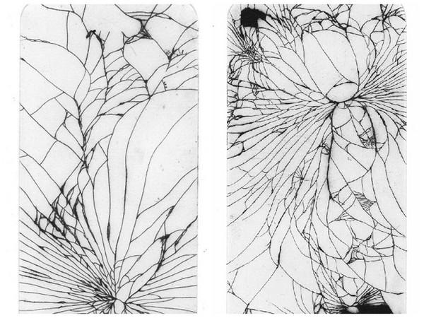 复杂翅膀手绘图