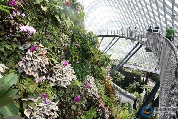 新加坡动物园   8. 裕廊飞禽公园   9. 新加坡爱来魔相艺术馆   10.