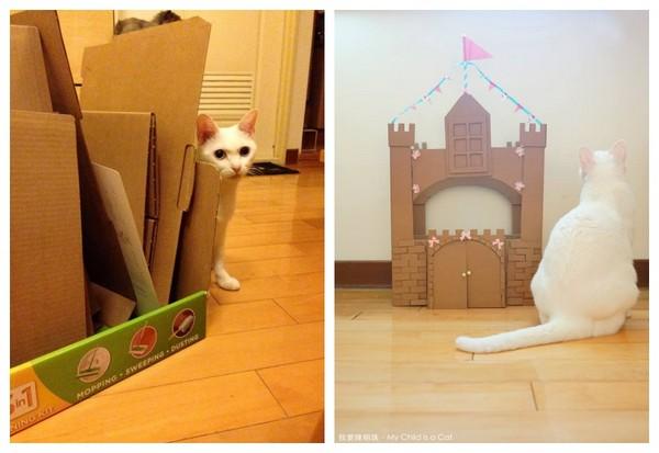 纸箱做城堡的步骤图片大全