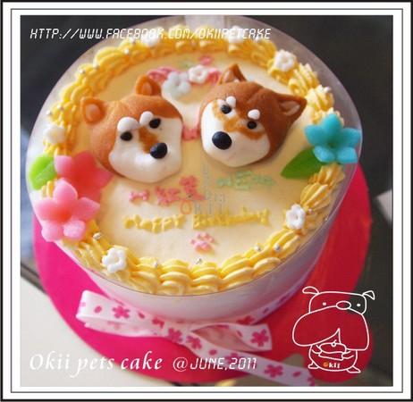 Okii麻自己親手製作精緻的寵物蛋糕。(圖/吉快樂寵物蛋糕屋提供) 記者李薇/台北報導 「狗狗只有你一個朋友」這句話讓Okii麻放棄原本從事建築的相關工作,在家陪伴著狗寶貝Okii(英國鬥牛犬);有次生日,她自己動手製作了Okii的生日蛋糕,順便把照片上傳到網路分享,沒想到朋友們紛紛回應讚賞,給予好評,就這樣,她開始走上製作寵物生日蛋糕的路途。  Okii麻原本從事建築相關行業,但卻因為愛著狗寶貝Okii的心情,毅然決然投入寵物蛋糕的工作。(圖/吉快樂寵物蛋糕屋提供) 一個個精緻華麗的生日蛋糕都是Ok