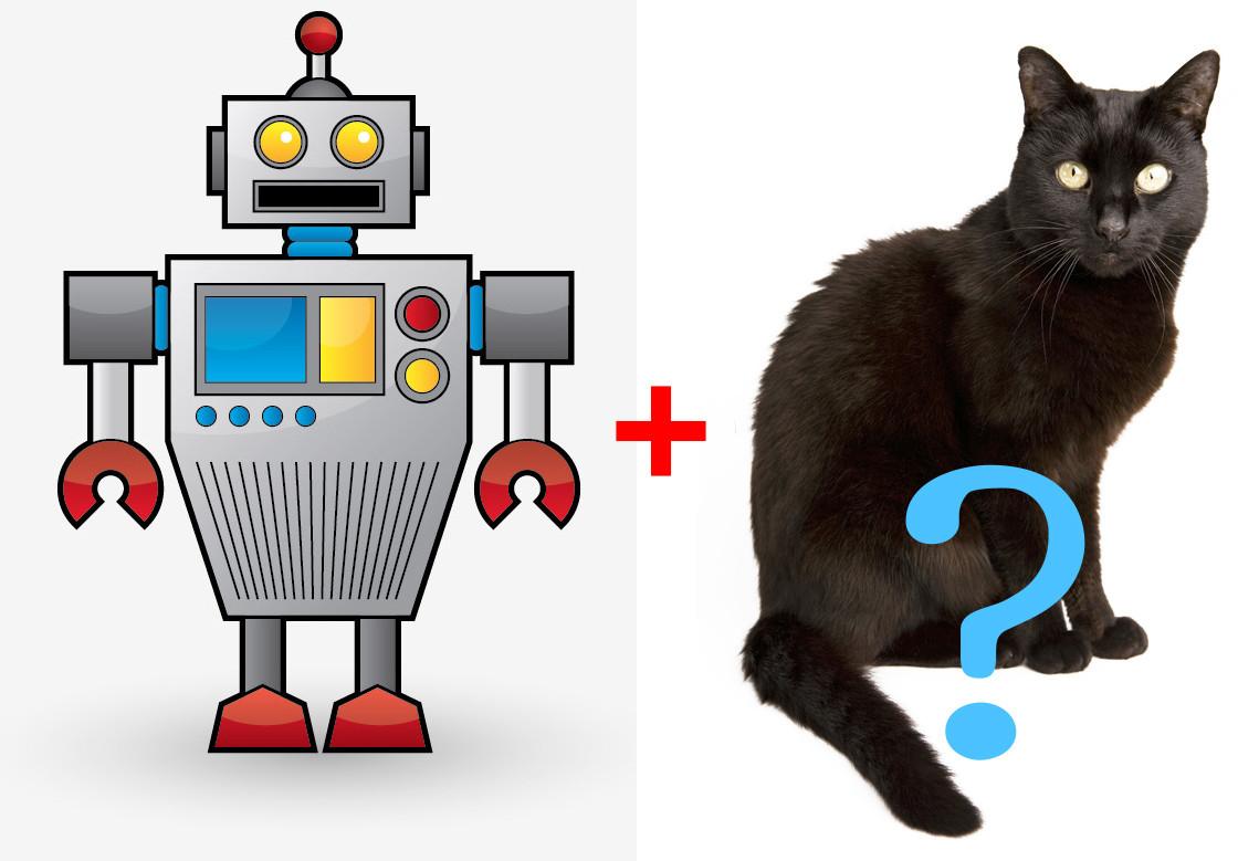 一张是机器人一张是猫的图形!