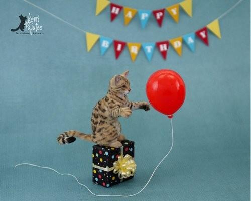 更希望这些可爱的动物雕塑,可以为欣赏的人带来愉悦的心情和微笑!