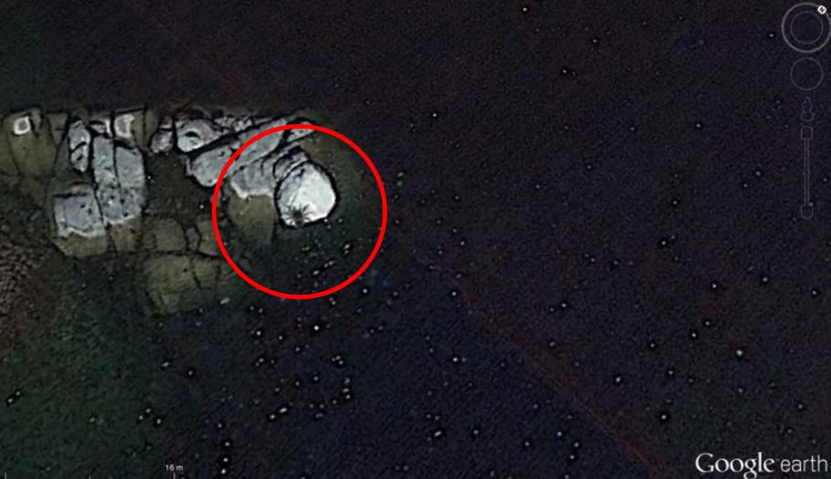 从google earth卫星图像乍见无人岛上「巴士般大蜘蛛」