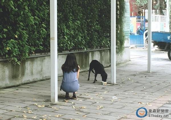 记者易景萱/台北报导 一念之间的善心,或许就可以让一只小动物的生命