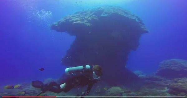 壁纸 海底 海底世界 海洋馆 水族馆 桌面 600_316