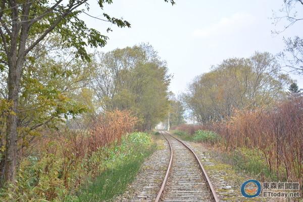 ▼驾驶小火车沿途风景优美,喜爱大自然的人肯定看不腻.