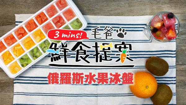 猫狗都能吃! 亲手做「俄罗斯水果冰盘」...夏天超消暑