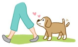 用屁屁靠着你? 狗狗爱你的「5种表现」...感觉到了吗?