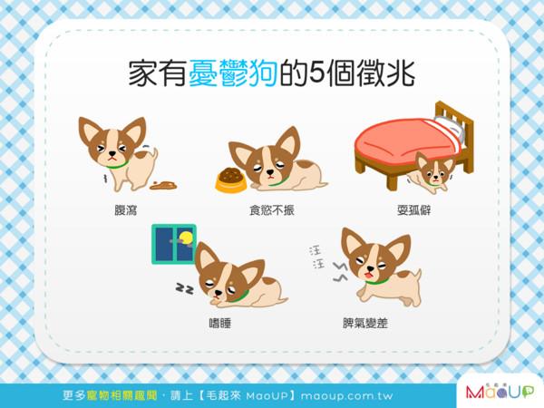 嗜睡、不想吃饭 狗狗「忧郁症」5大征兆...你发现了吗?