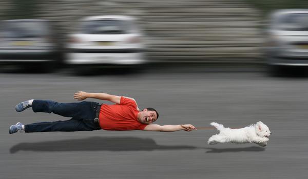 老被狗狗拖着跑? 「遛狗密技」大公开...换路线更刺激