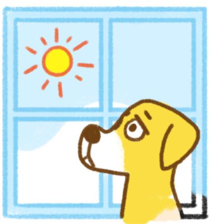 汪星人最讨厌「人类做4件事」! 狗狗OS:快带我散步啦~