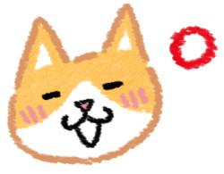 过热过冷都NG! 原来猫咪最爱「这温度」食物...笔记没?
