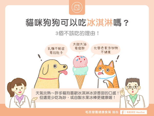 热翻天...猫狗可吃冰淇淋吗? 「3大后果」千万别乱喂!