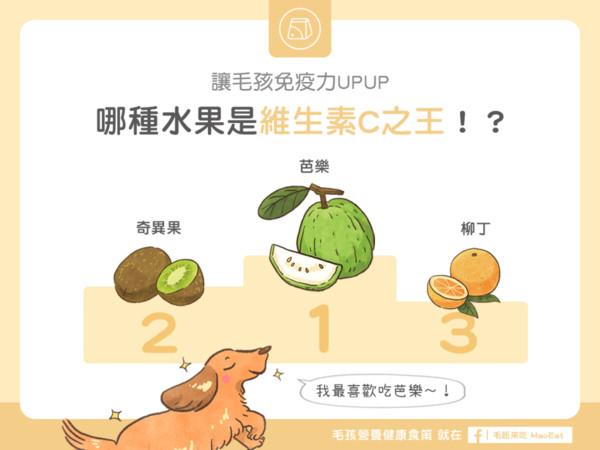 毛孩「必吃水果TOP3」! 芭乐太优秀直接打趴零食啦