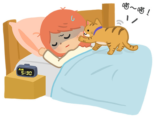 家有「猫闹钟」该怎么办? 选错答案=无限睡不饱!