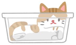 猫都是水做的? 喵喵「筋骨软Q」真相是它...太惊人啦!