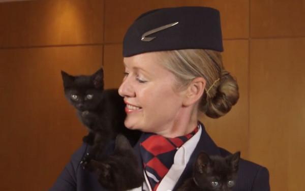 英國航空公司推出的寵物頻道,空姐和小貓當model拍預告片(圖/翻攝自YouTube) 旅遊中心/綜合報導 你是否曾經在youtube搜尋可愛的貓貓影片?每當看到小貓們扭動著毛茸茸身軀是不是讓人覺得他們真的是可愛得受不了? 英國航空(British Airways)公司也是這麼認為,他們將在9月推出寵物頻道Paws and Relax,希望藉由這些小動物們的療癒影片減低長途機乘客的緊張情緒,英航的機上娛樂經理迪古魯茲 (Richard D'Cruze)抱着狗狗表示「這個靈感是因為許多研究發現
