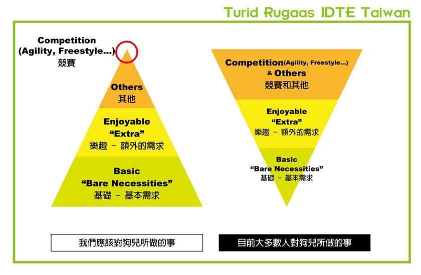 金字塔图表揭示:现在饲主对的基本需求做得太少