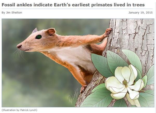 地球上最早的灵长类动物生活在树上