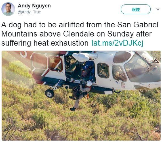 ▲直升機救援中暑的汪星人與其飼主。(圖/翻攝自twitter:Andy_Truc)