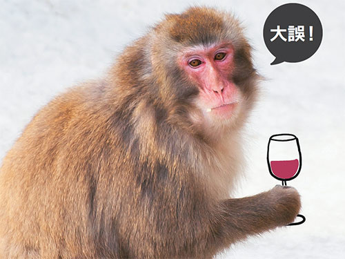 康健雜誌/喝酒臉紅是肝功能、酒量好?大誤!