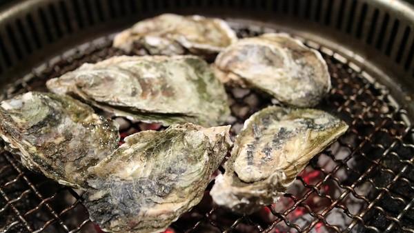 ▲▼海鮮,牡蠣,文蛤,蛤,秋刀魚。(圖/翻攝自pixabay)秋刀魚(圖/Sozai-Page免費圖庫)
