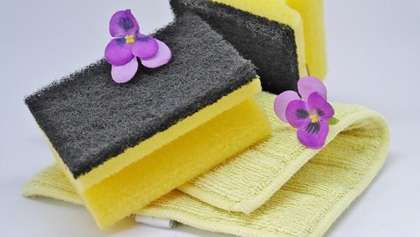 ▲▼毛巾,海綿,寵物,打掃,宅。(圖/翻攝自pixabay)